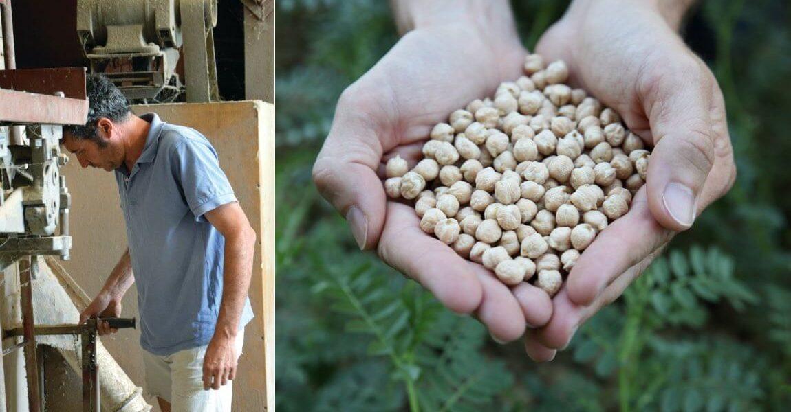 Agriculture céréalière bio et équitable en France